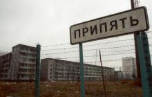 Очевидцы показали редчайшую красоту посреди мертвой зоны Чернобыля, такого никто не ожидал