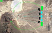 В США застрелили гибрида человека и пришельца, сбежавшего из Зоны 51