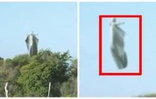 Инопланетные ангелы осуществили в небе военный обряд перед вторжением на Урал