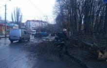 На Украину обрушился страшный ураган: погиб ребенок, много разрушений – фото последствий стихии