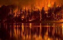 Китайские СМИ раскрыли причину пожаров в Сибири: вы не поверите, все очень банально
