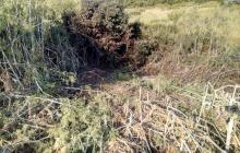 Война на Донбассе: оккупанты ранним утром ударили по Зайцево, погибла мирная жительница
