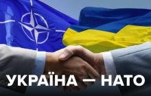"""Вступление Украины в НАТО: в """"Слуге народа"""" раскрыли детали на ближайшее время"""