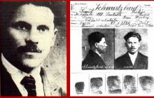 Обнародованы секретные материалы об УНР и убийстве Симона Петлюры