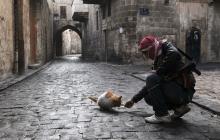 Военный конфликт в Сирии. Хроника событий 31.03.2016