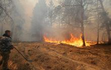 Пожары в Чернобыле и Житомирской области: что происходит