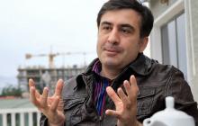 Саакашвили рассказал о произволе одесских коммунальщиков, показав труп дельфина на пляже