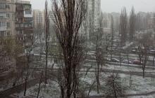 Киев накрыл мощный снегопад в последний день марта: киевляне такого не видели давно, видео