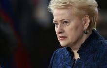 Грибаускайте обвинила Россию в оккупации Крыма и притеснении крымских татар: в Вильнюсе всегда будут выступать за санкции против РФ