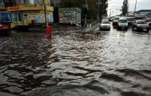 Непогода с бурей и ливнями обрушилась на Киев: стихия валила деревья, есть повреждения, кадры