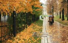 Прогноз погоды в Украине на последние дни ноября: резкое потепление до +14