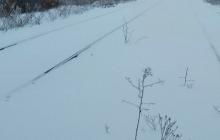 Даже рельсов почти невидно: в Сети показали железную дорогу, по которой луганские боевики собирались пускать поезда в Европу, - кадры