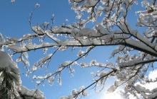 Прогноз погоды на начало февраля: Украину ждет оттепель и резкое похолодание до - 30° мороза - народный синоптик