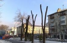 В Донецке сохраняется тишина и продолжаются ремонтные работы, - горсовет