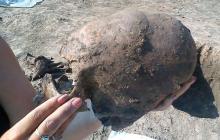 Ученых потрясли останки трех пришельцев в Хорватии, стала известна причина смерти гуманоидов