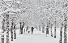 В Украину идет снегопад: синоптики рассказали, какие области первыми засыпет снегом