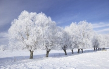 Когда в Украине начнутся морозы - синоптик Диденко дала прогноз относительно похолодания в стране