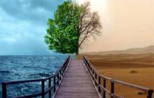 Предсказан быстрый и катастрофический сдвиг климата, близится конец