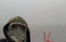 """""""Сахара"""" под Черниговом: появилось видео новой пустыни на месте, где 12 лет назад зеленело пастбище"""