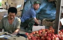 """В Дагестане требуют """"убрать"""" китайцев с территории республики, назревает конфликт"""