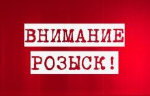 """""""Пытаются найти видео"""", - всплыли подробности исчезновения 11-летней Даши Лукьяненко в Одесской области"""