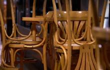 Незаконная вырубка лесов в Карпатах на стулья: выяснилась роль компании IKEA