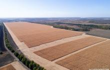 Продажа земли иностранцам: в Верховной Раде поддержали неожиданную поправку