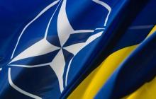 Новый статус Украины в НАТО: в Кабмине пояснили, к чему теперь стремится Киев