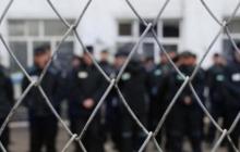 """Поклоннице """"Новороссии"""" из Мелитополя грозит до 5 лет тюрьмы за сепаратизм"""