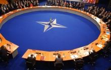 Только поодиночке: в НАТО высказались по поводу вступления Украины и Грузии в Альянс