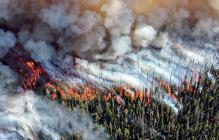 Пожары в России обернулись катастрофой: ученые потрясены увиденными снимками из космоса - фото