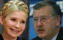 """""""Гриценко богаче Тимошенко в 10 раз"""", - блогер Чекалкин опубликовал важную информацию о кандидате в президенты"""