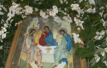 Троица-2020: ветки каких деревьев нельзя святить в день святого праздника