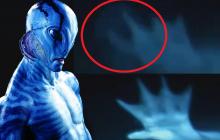 Ростовские аквалангисты выявили в местном водоеме громадную инопланетную русалку