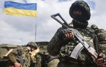 Владимир Зеленский подписал важный закон для добровольцев: что известно