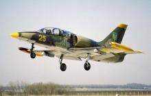 Крушение самолета Л-39 под Хмельницким: очевидцы сообщили жуткие подробности смертельной трагедии - обнародованы кадры с места происшествия