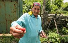 """На Донбассе трагически погибла 79-летняя """"киборг"""" баба Маша, заживо сгорев в своем доме"""