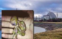В зараженной радиацией реке Припять нашли карликового пришельца - мир поражен новой находкой в Чернобыле