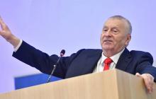 """Жириновский дал пару """"советов"""" Лукашенко по сохранению власти"""