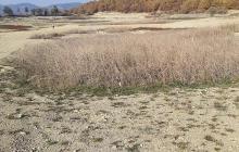 Краснокаменское озеро в Крыму: что случилось с водоемом всего за один год, видео