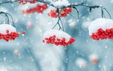 """Синоптик Кульбида о погоде: """"Забудьте о холодной  зиме, ее в Украине больше не будет """""""