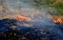 Позиции ВСУ на Донбассе чуть не поглотил масштабный пожар: штаб говорит о диверсии - кадры