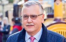 """Гриценко обратился к Зеленскому: """"Остановись, не делай этого"""""""