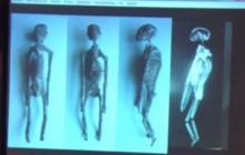 Открытие под грифом ʺсовершенно секретноʺ: пирамиды в Гизе таили погребение инопланетных существ