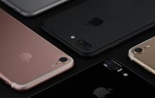 В преддверии старта предзаказа iPhone 7 и iPhone 7 Plus стали известны цены на флагманы Apple в Украине