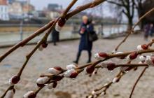 В Украину ворвется антициклон Odilo: температура даст резкий скачок - прогноз
