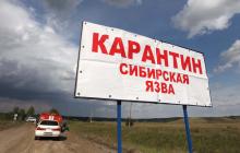 Жителей Дагестана косит сибирская язва: откуда пришла смертельная опасность