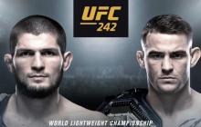 Стал известен победитель боя Хабиб Нурмагомедов – Дастин Порье: результат онлайн-трансляция UFC