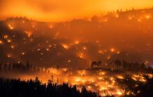 Калифорнийский пожар уничтожает дома, поля и леса: ситуация очень тревожная