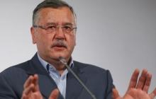 """Гриценко шокирован решением по ПриватБанку: """"Этот удар нам не вынести, нужно срочно что-то делать"""""""